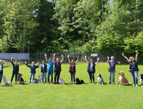 BHV Hundeführerschein 2019
